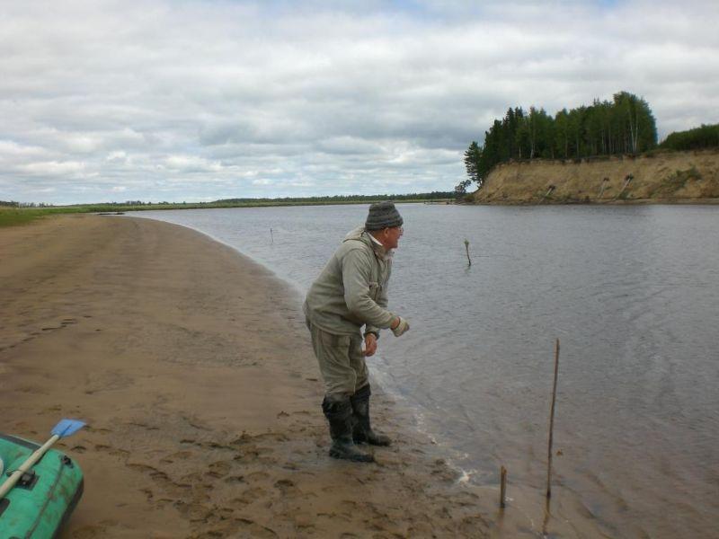 рыбалка ловля сома на закидушку